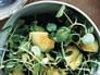 watercress-avocado-salad