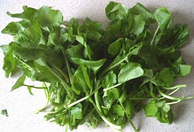 watercress-superf